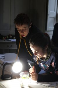 Children looking at a plant in a beaker of water for a science experiment
